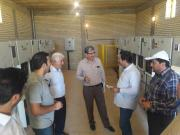 electricity power supplement project in Golfaraj&Gordian